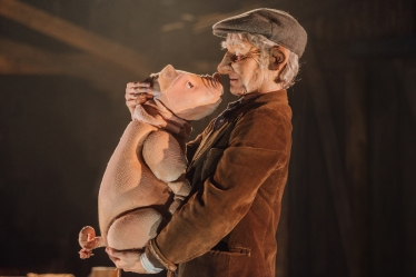 babe-the-sheep-pig-at-polka-theatre-photo-by-david-monteith-hodge-2