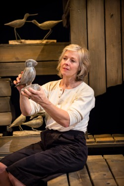 helenmurray-why-the-wales-came-watford-palace-theatre-881