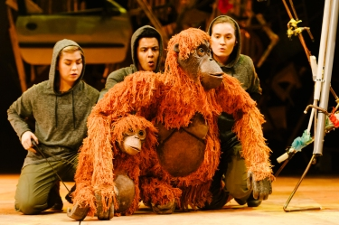 Frank, baby Orangutan and Mani (with Darcy Collins Fred Davis and Romina Hytten)_credit Dan Tsantilis_2
